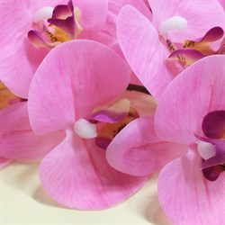 Best collection-орхидея 34.5 REAL TOUCH PHALAENOPSIS SPRAY×8FLWS, 88 см.